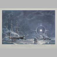 Steam Whalers Newport, Balaena, Karluk and Jeanette Wintering at Hershel Island, 1895